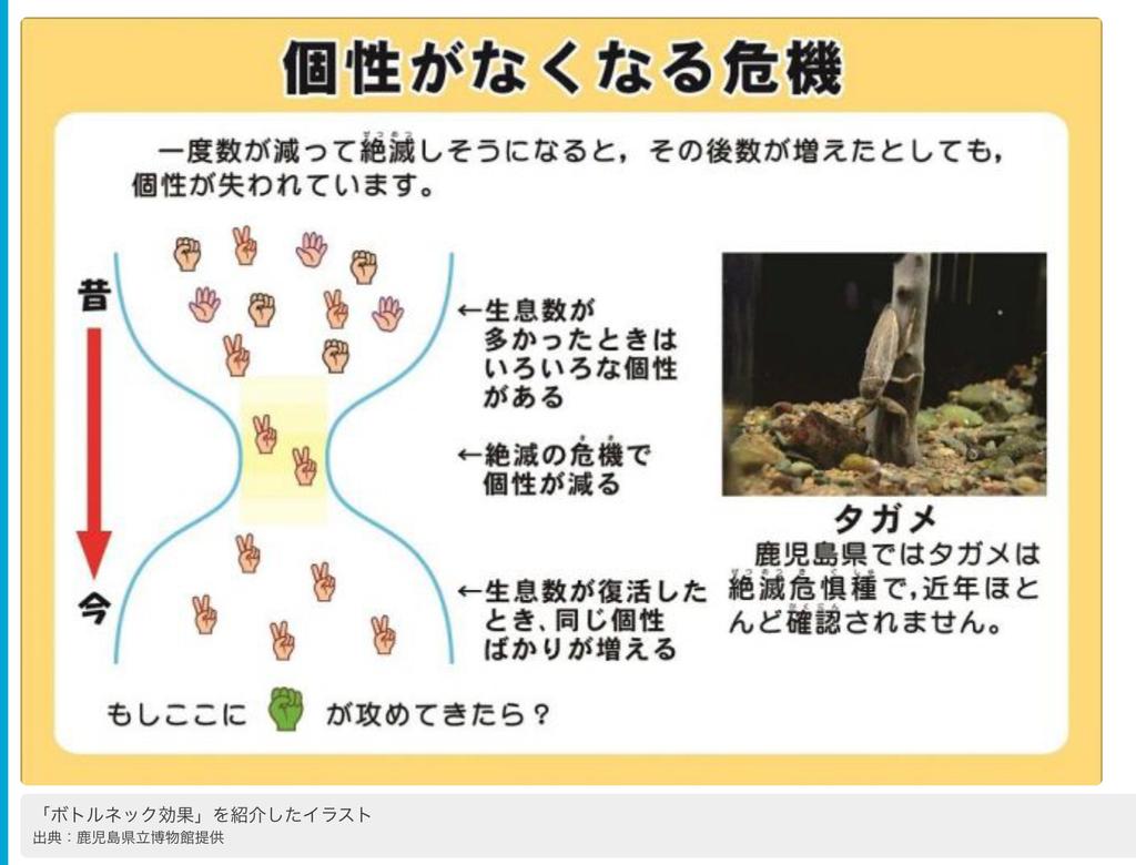 f:id:chigau-mikata:20190111160120j:plain