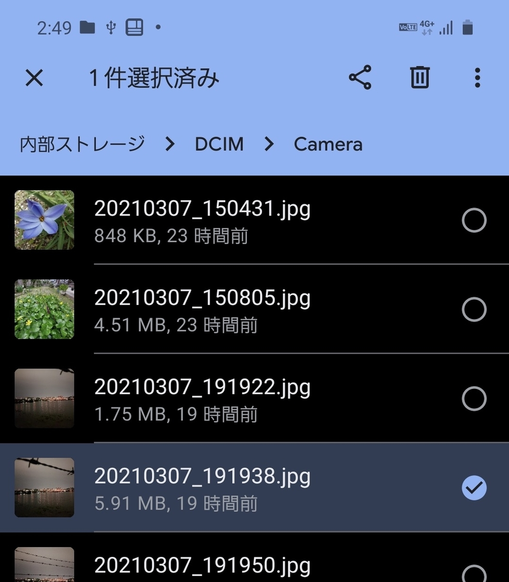 f:id:chigau-mikata:20210308153753j:plain