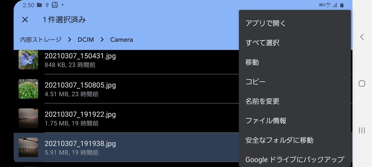 f:id:chigau-mikata:20210308153848j:plain