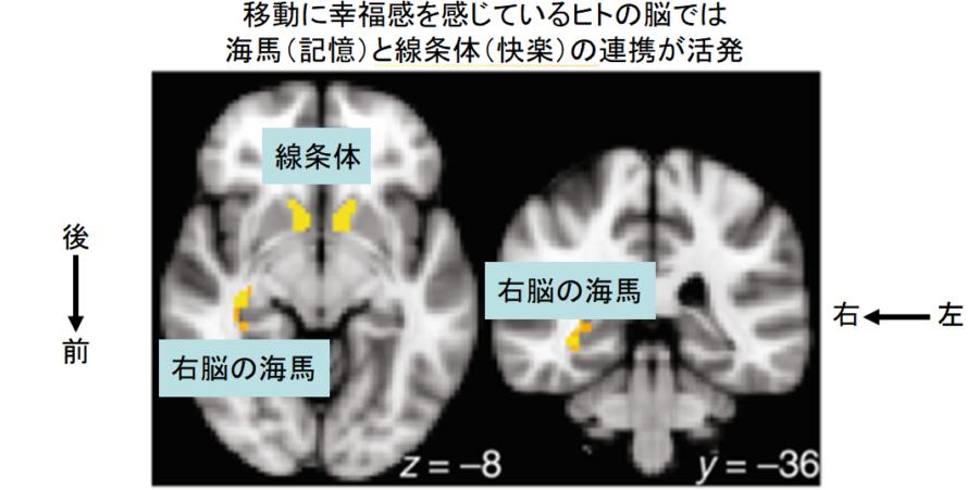 f:id:chigau-mikata:20210407112125p:plain