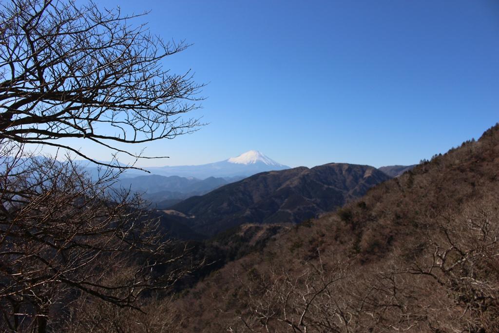 富士見台から見る富士山