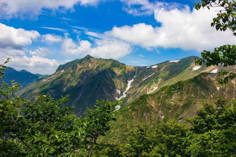 山頂方面の景色