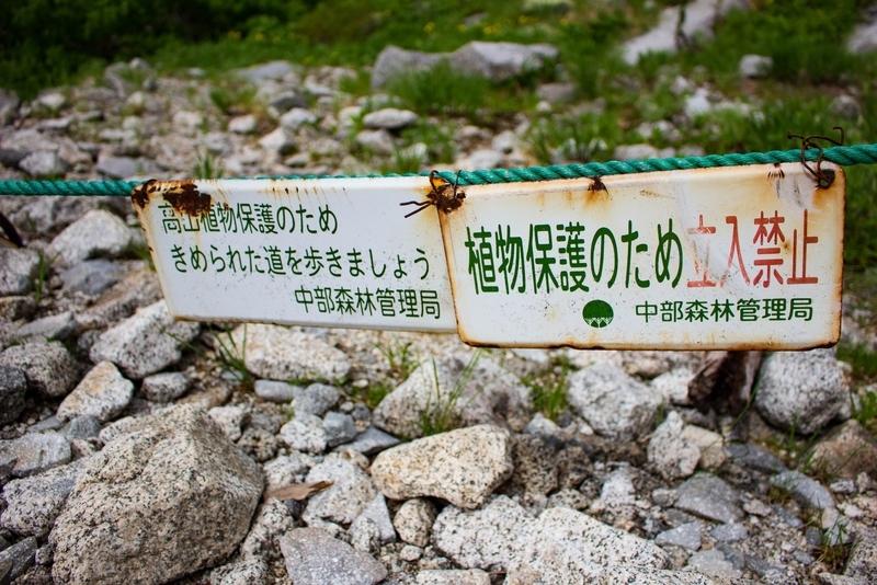 植物保護のため立ち入り禁止の表示
