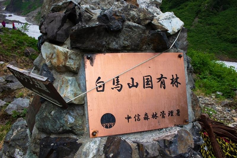 白馬岳国有林