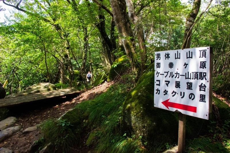 男体山への道