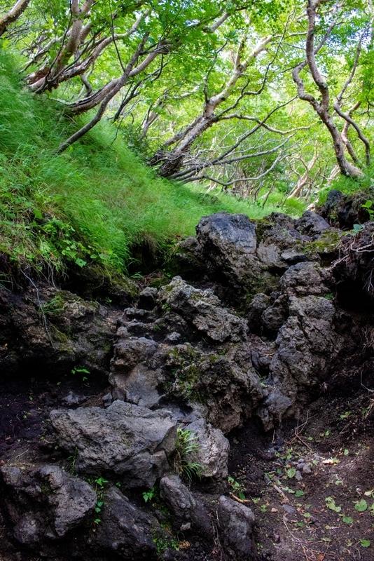 岩の多い足場の写真