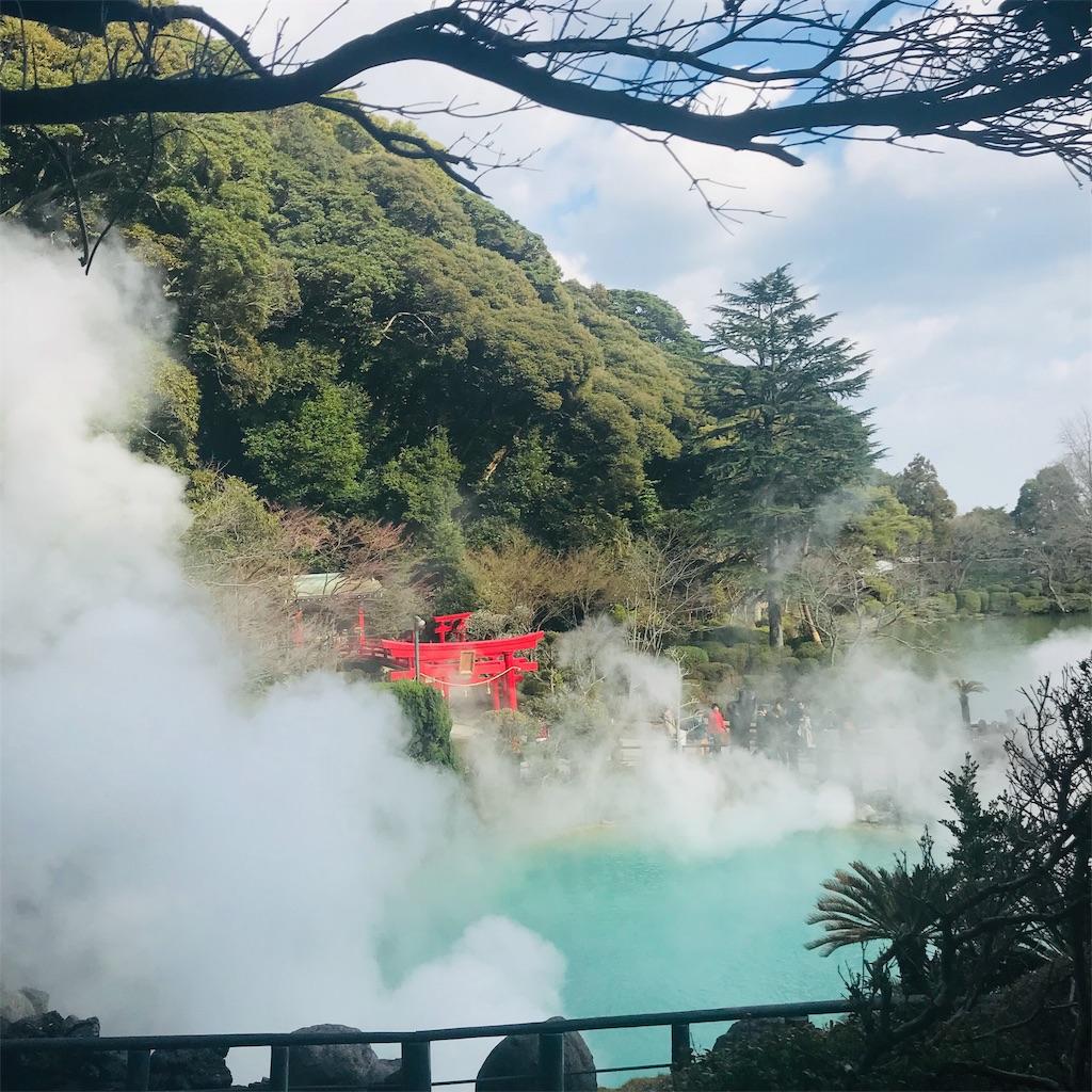 f:id:chihiro-kk:20190224222426j:image
