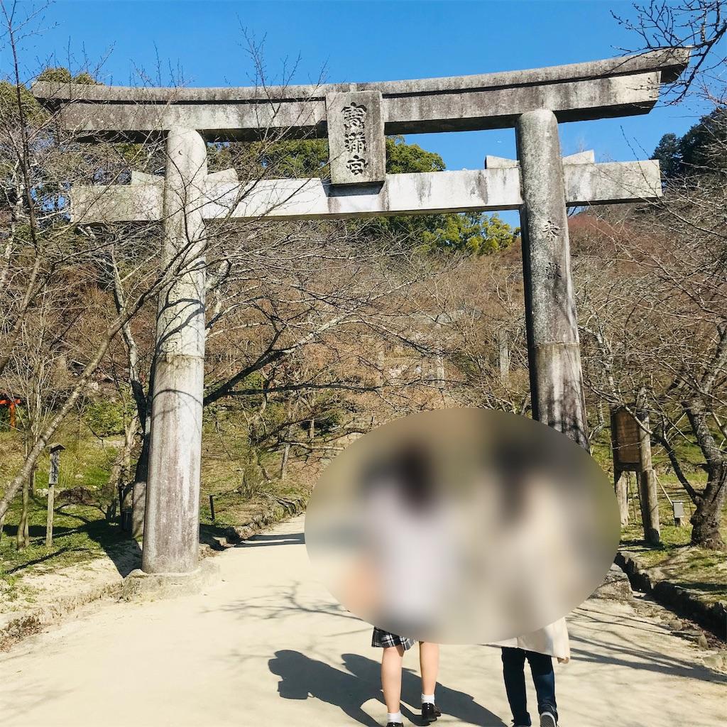 f:id:chihiro-kk:20190227175254j:image