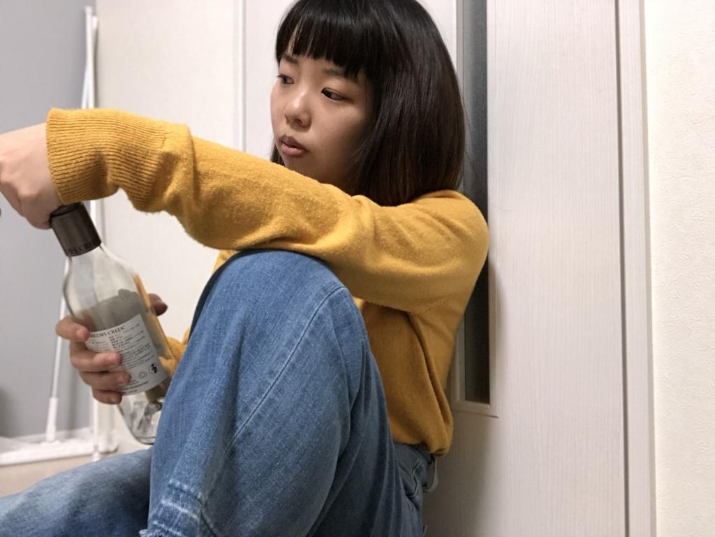 f:id:chihiro-sasaki:20180109195030j:plain