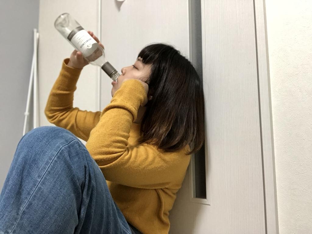 f:id:chihiro-sasaki:20180109195110j:plain