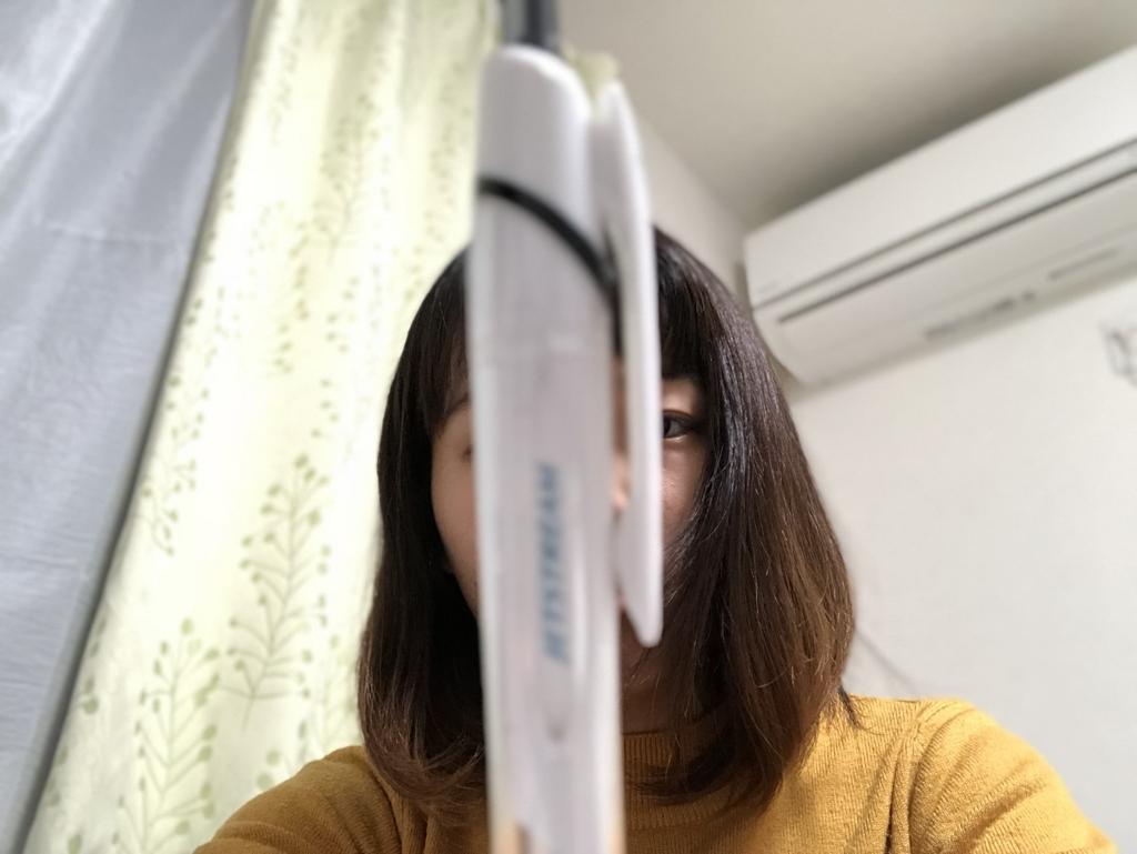 f:id:chihiro-sasaki:20180109204845j:plain