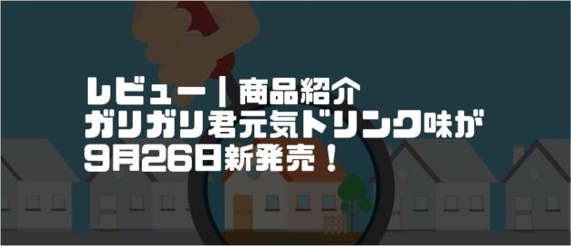 f:id:chihiro_dayori:20170929211720j:plain