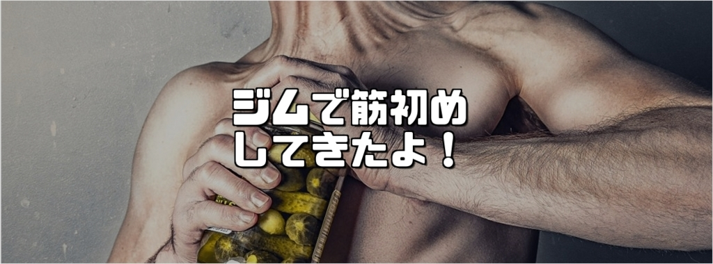 f:id:chihiro_dayori:20180106003924j:plain