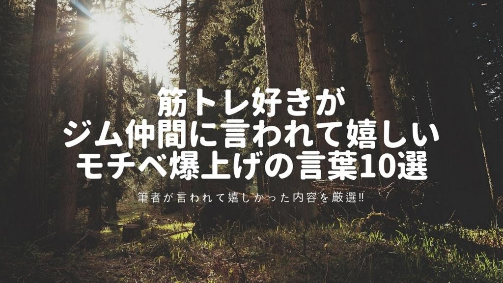 f:id:chihiro_dayori:20180227152548j:plain