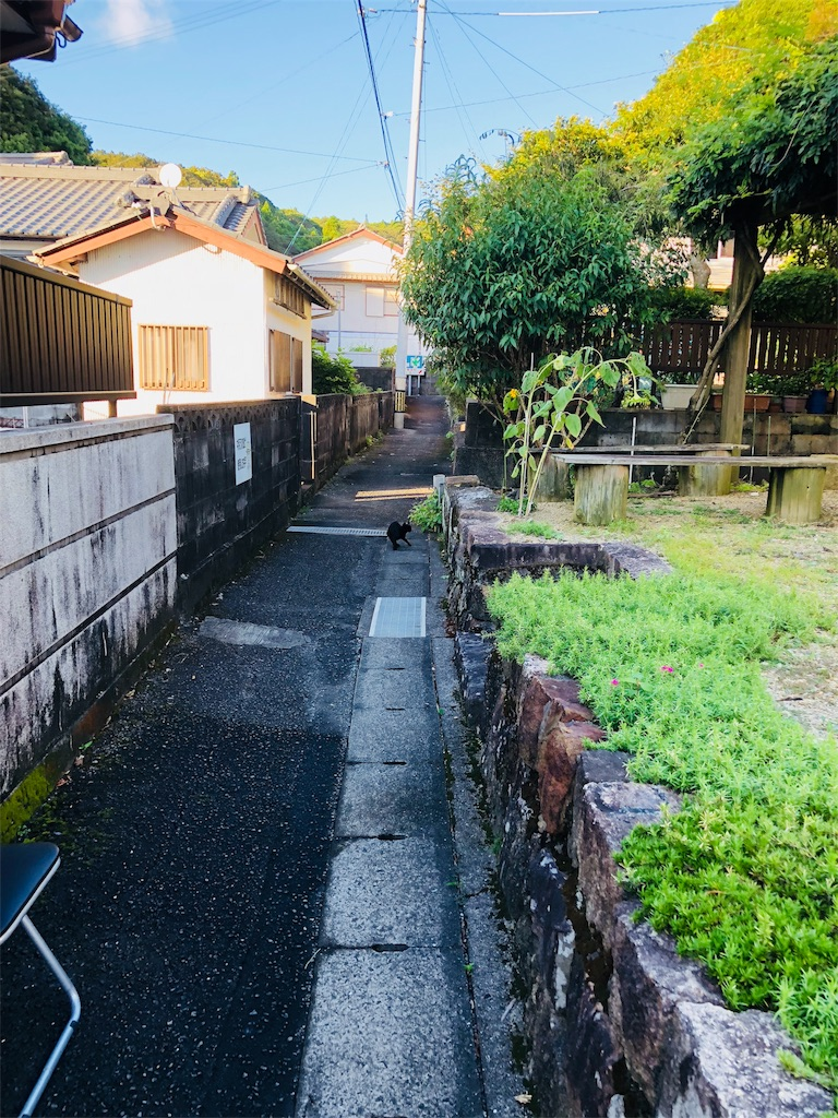 f:id:chihirocity:20180826183137j:image