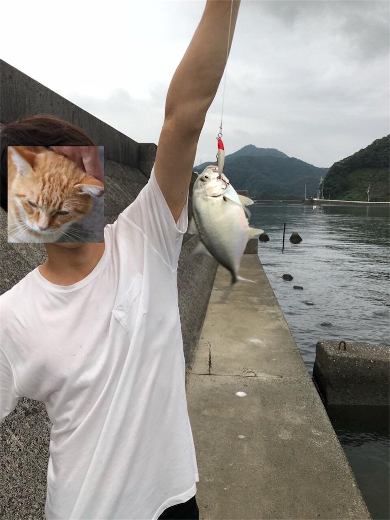 f:id:chihirocity:20180924230631j:image