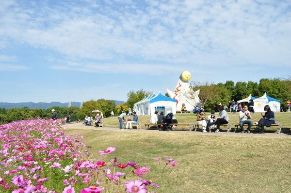 花の丘 コスモスフェスタ