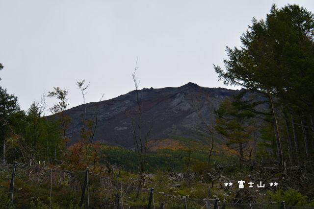 [あれこれ]富士山