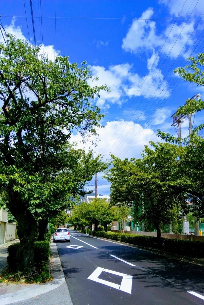 f:id:chihonakajima:20170903163109j:plain