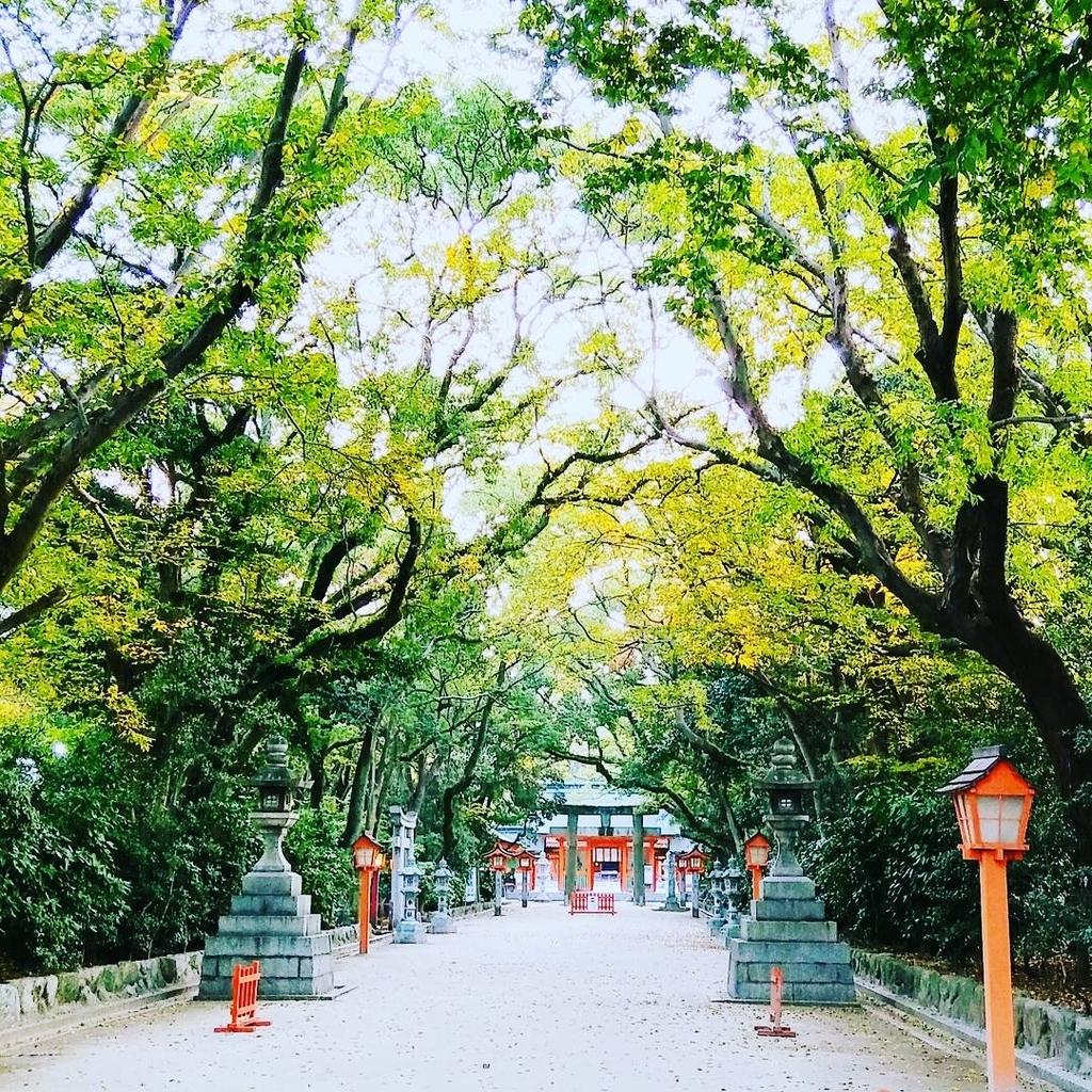 f:id:chihonakajima:20181116181133j:plain