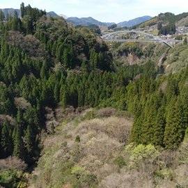 f:id:chihonakajima:20200502134102j:plain