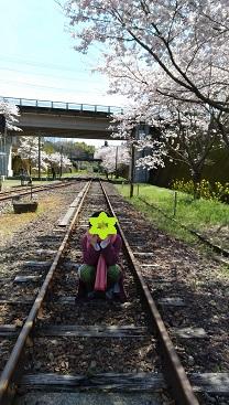 f:id:chihonakajima:20200517093219j:plain