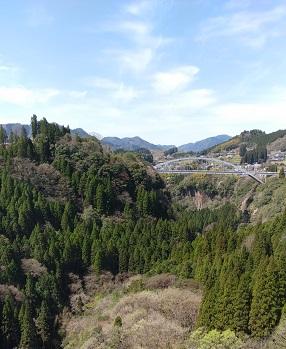 f:id:chihonakajima:20200517093302j:plain