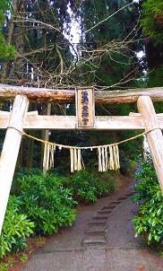 f:id:chihonakajima:20200521082807j:plain