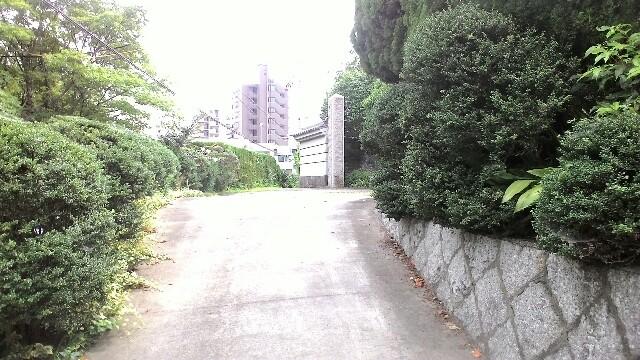 f:id:chiichii5116:20160717220334j:plain