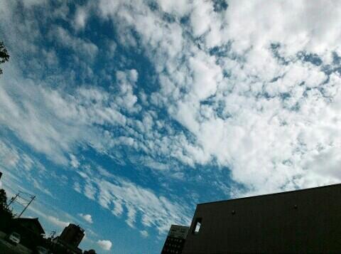f:id:chiichii5116:20160828084118j:image