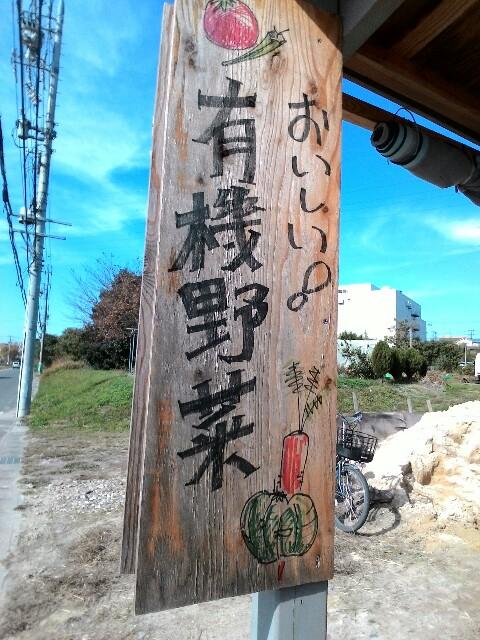 f:id:chiichii5116:20161115081758j:plain