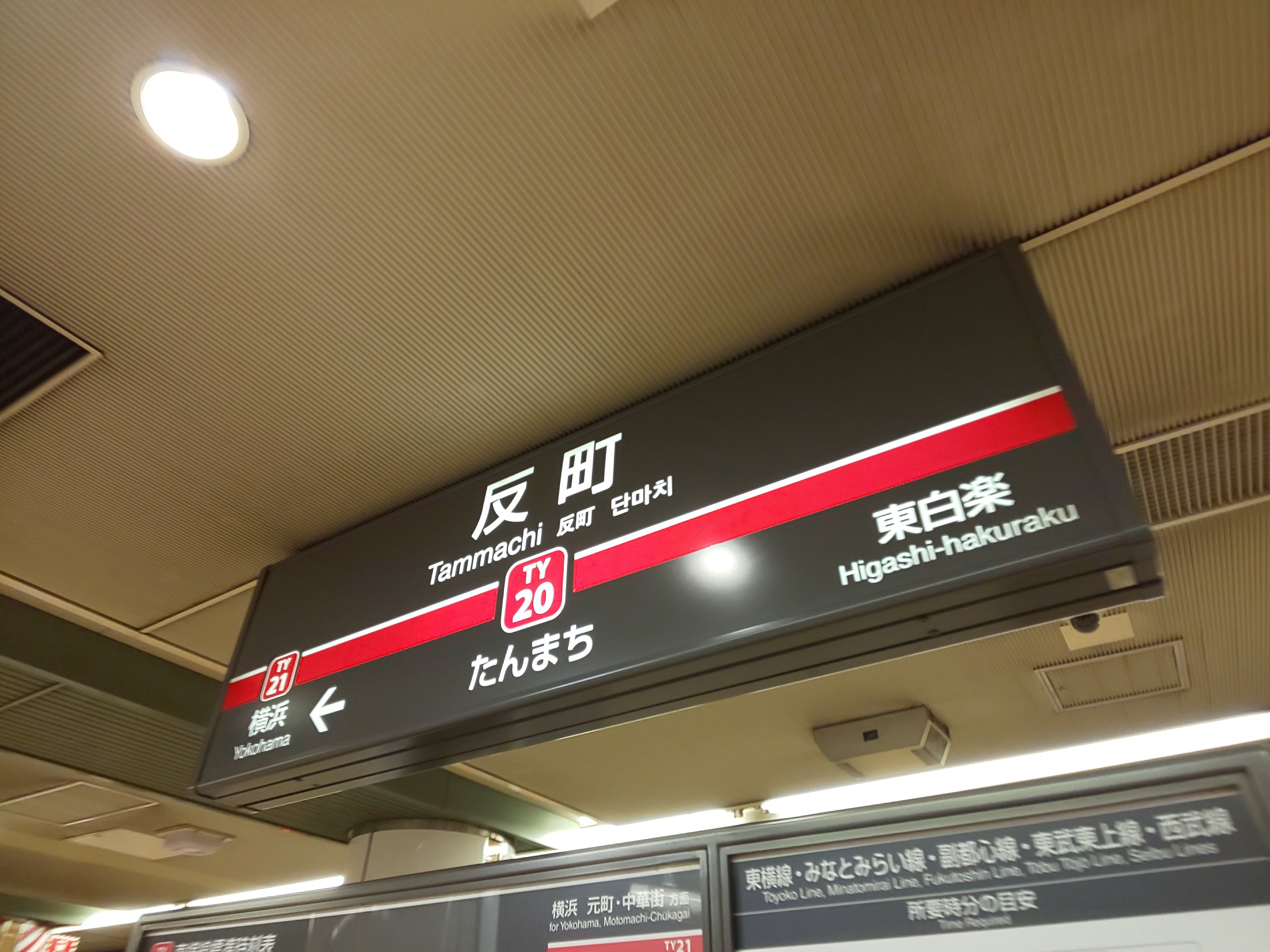 f:id:chiichii555:20201021191010j:image