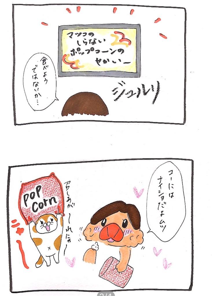 f:id:chiisakiobu:20191006000249j:image