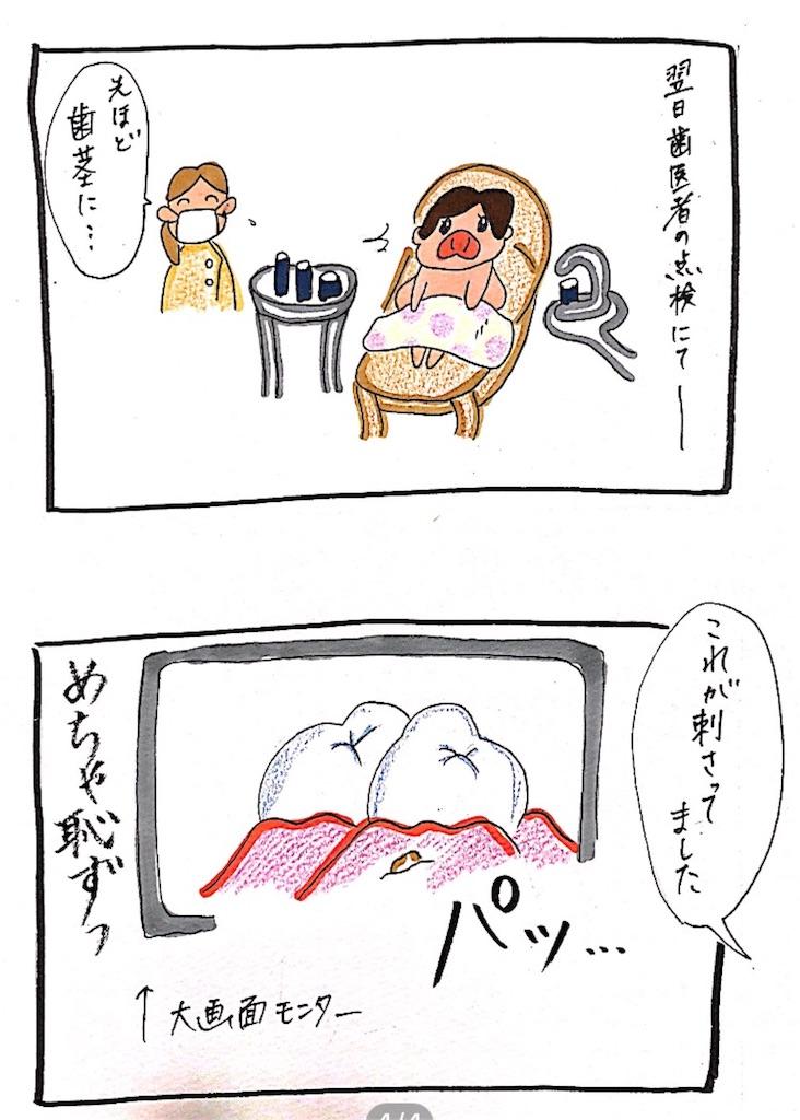 f:id:chiisakiobu:20191006000252j:image