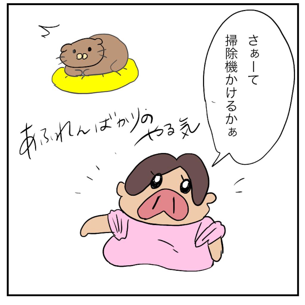 f:id:chiisakiobu:20191111013903p:image