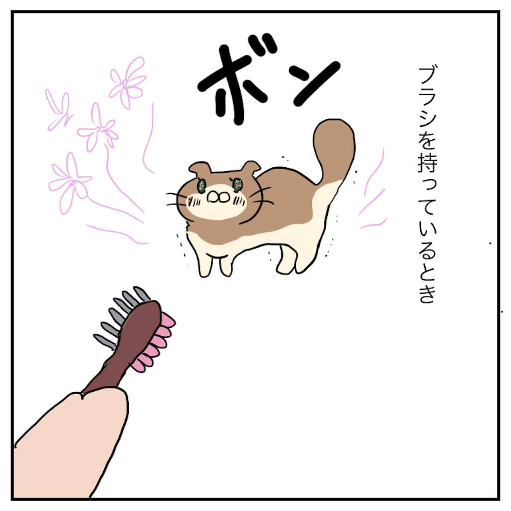 f:id:chiisakiobu:20191112224524p:image