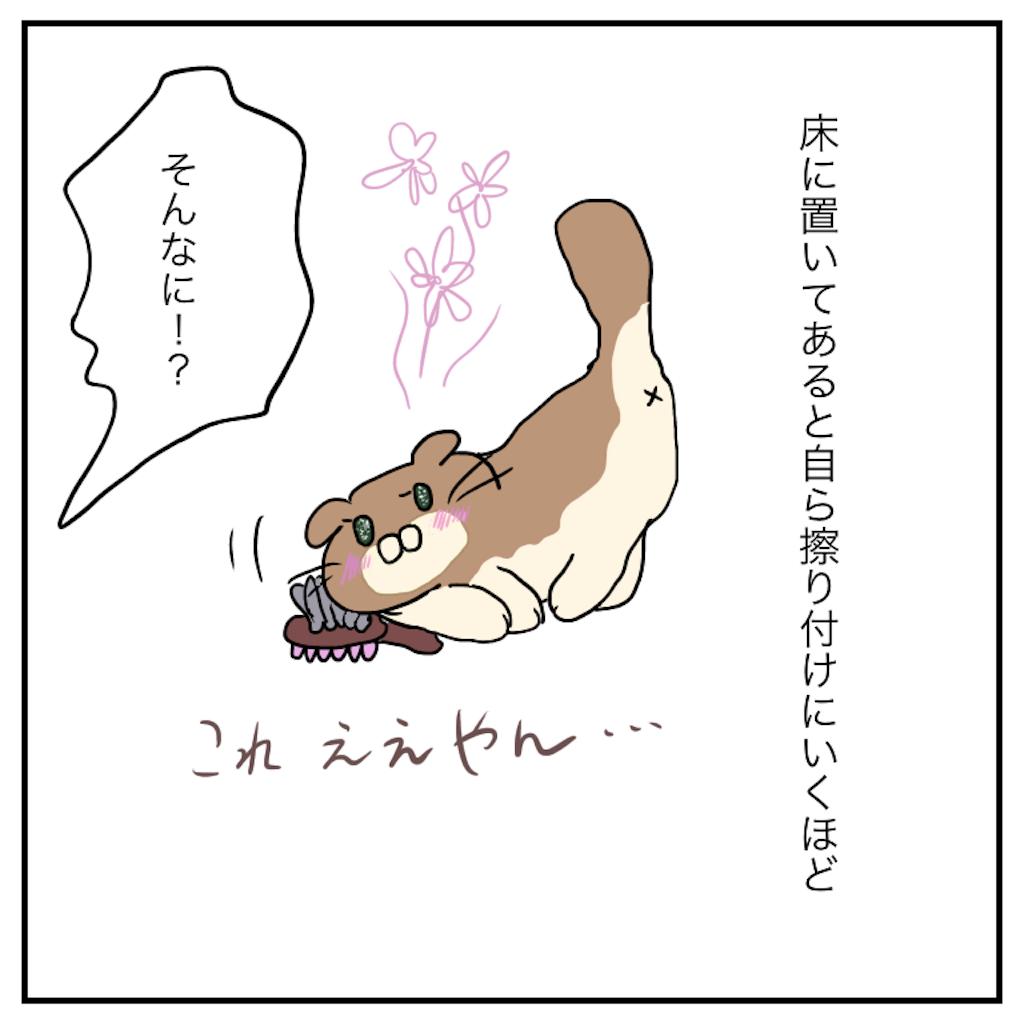 f:id:chiisakiobu:20191112224552p:image