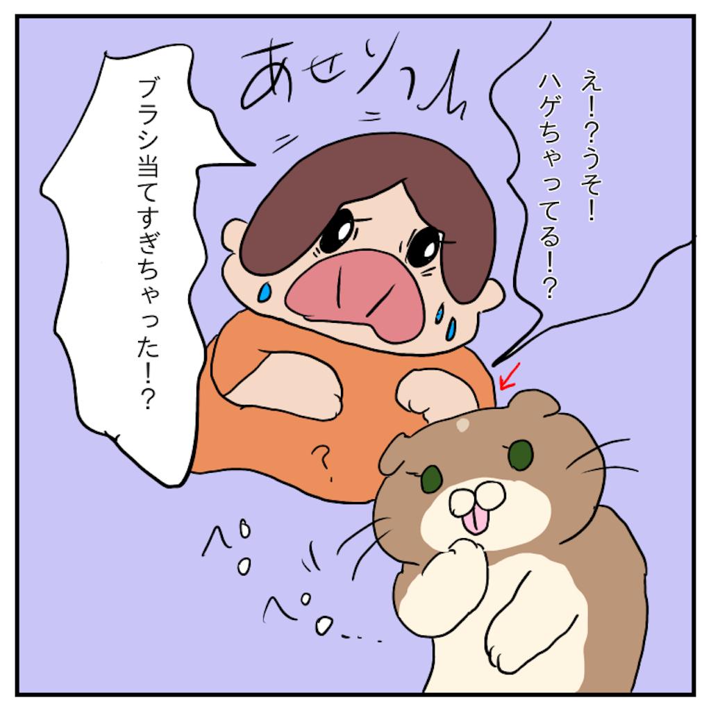 f:id:chiisakiobu:20191114004536p:image