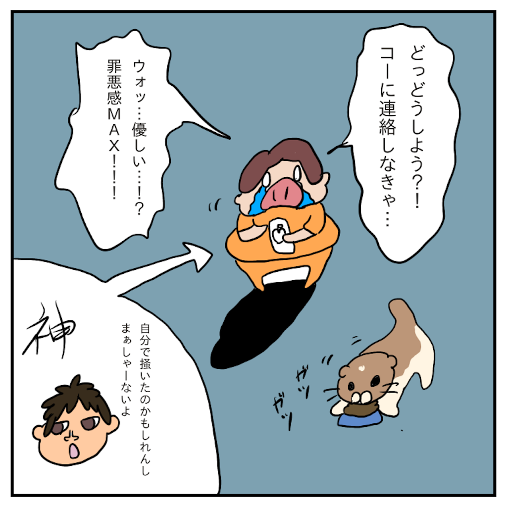 f:id:chiisakiobu:20191114004542p:image