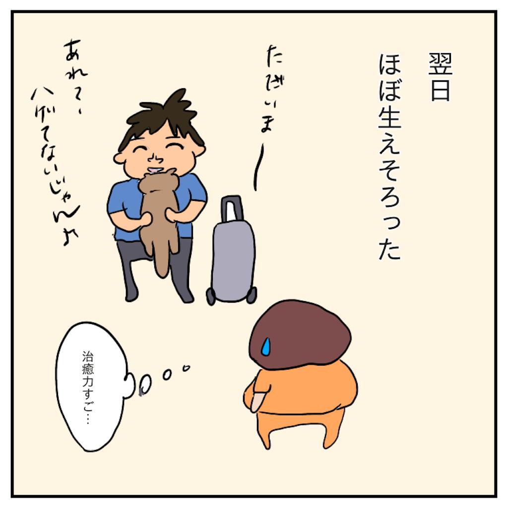 f:id:chiisakiobu:20191114004610p:image