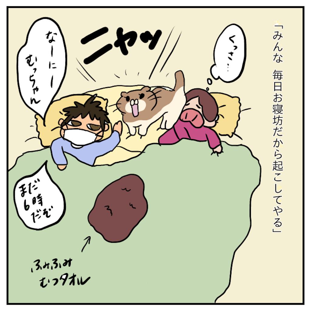 f:id:chiisakiobu:20191119221750p:image