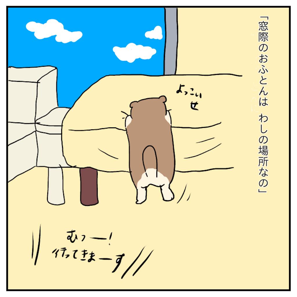 f:id:chiisakiobu:20191119221820p:image