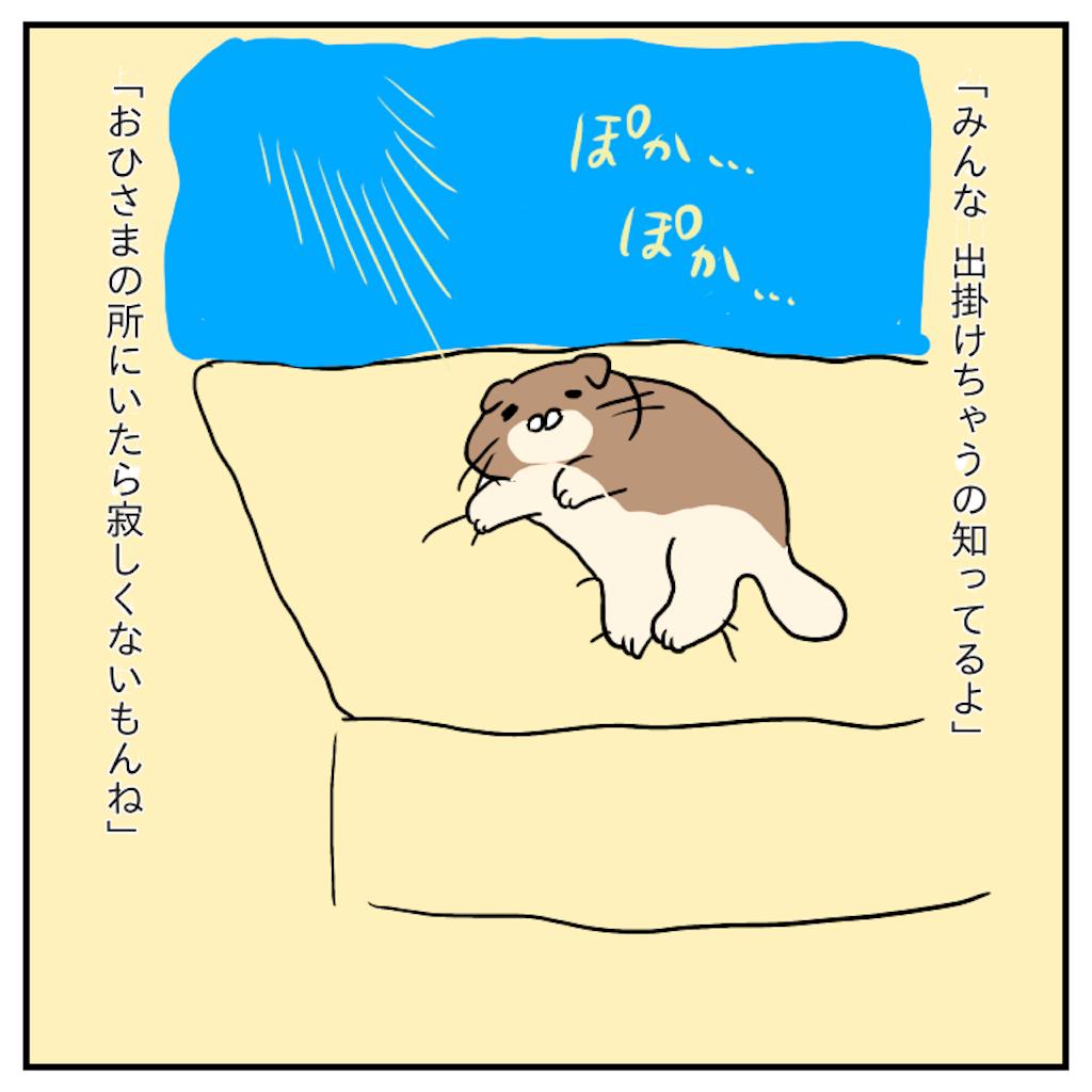 f:id:chiisakiobu:20191119221831p:image