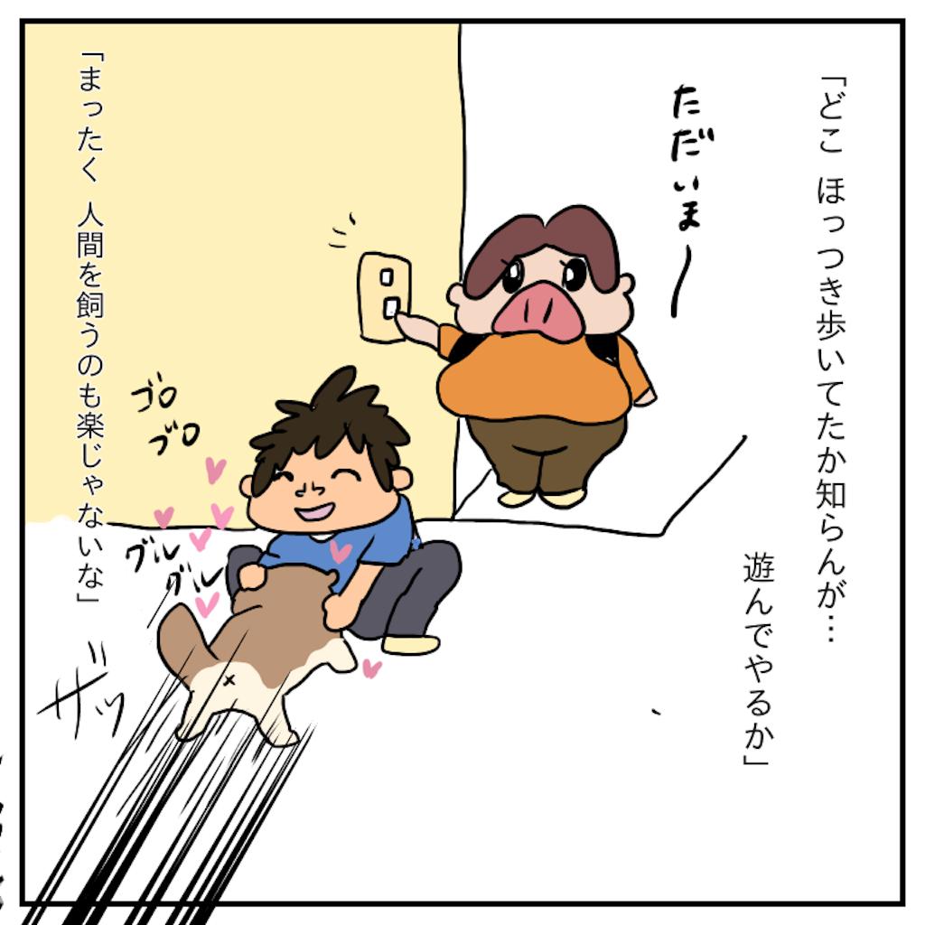 f:id:chiisakiobu:20191119221847p:image