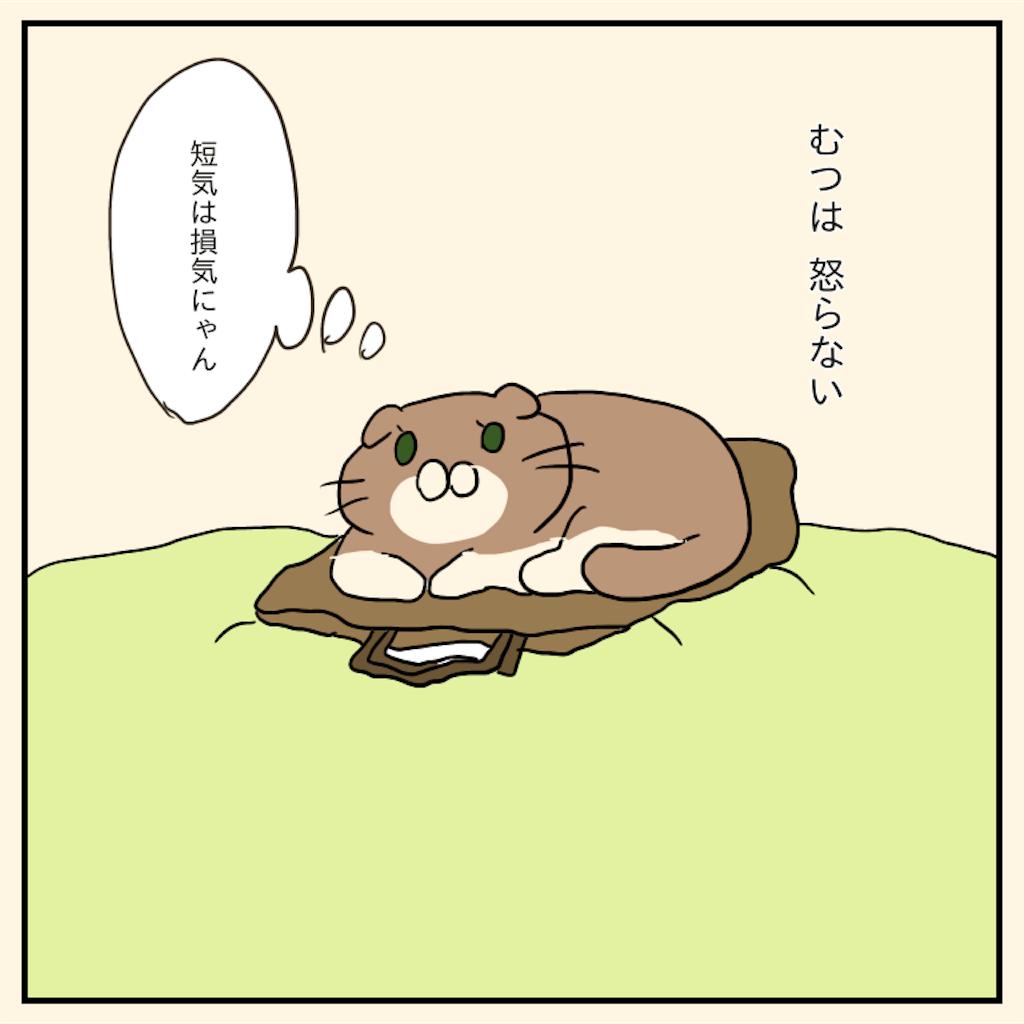 f:id:chiisakiobu:20191120230500p:image