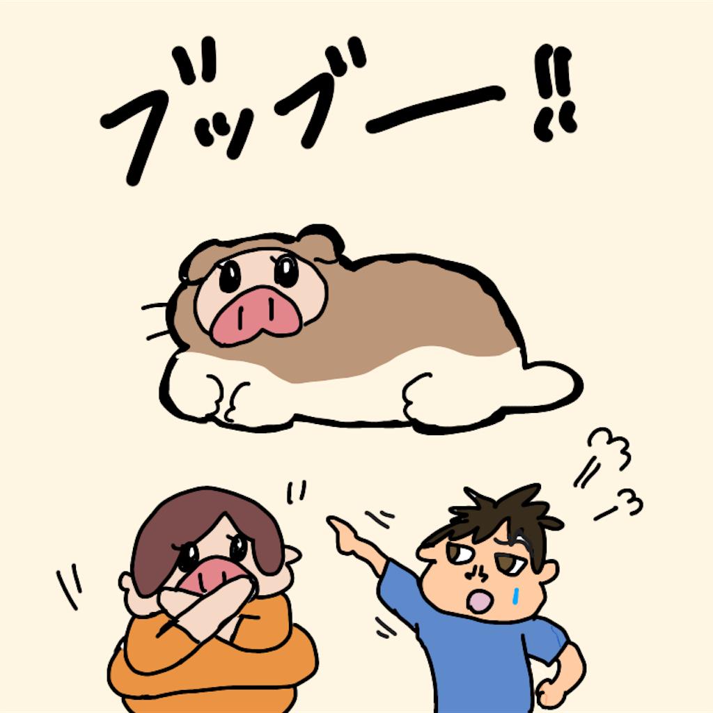 f:id:chiisakiobu:20191126212415p:image