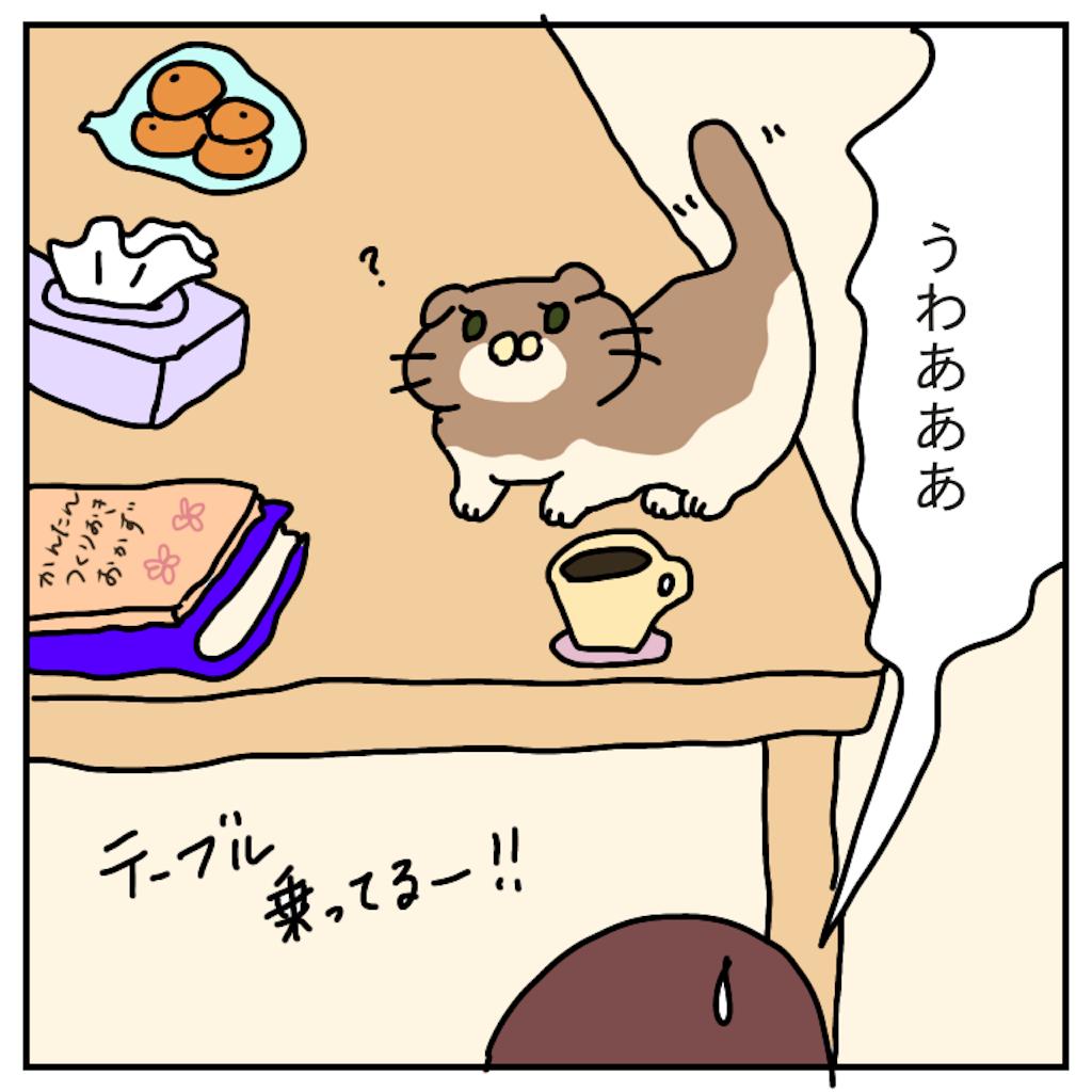f:id:chiisakiobu:20191130211639p:image