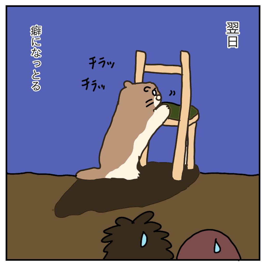 f:id:chiisakiobu:20191130211727p:image