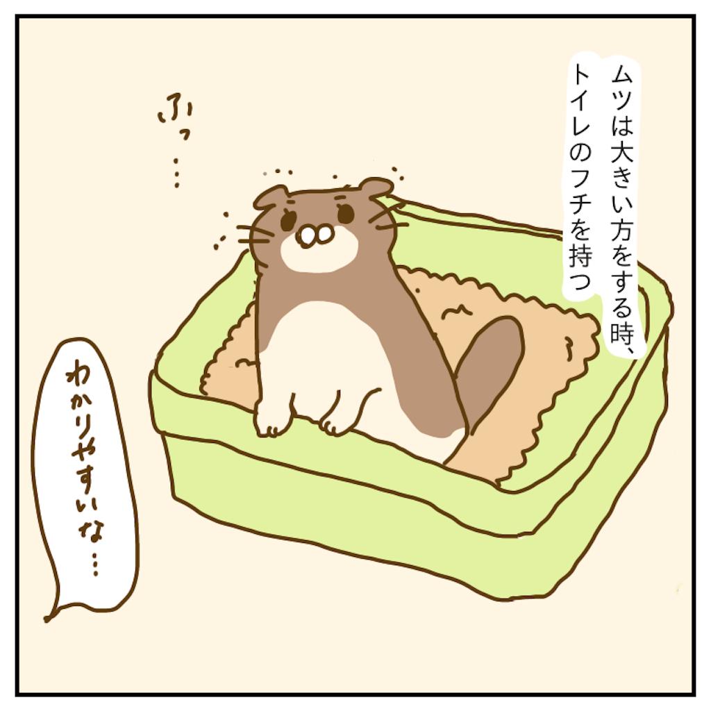 f:id:chiisakiobu:20191207213741p:image