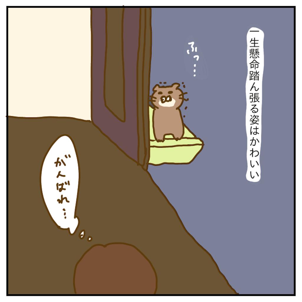 f:id:chiisakiobu:20191207213753p:image